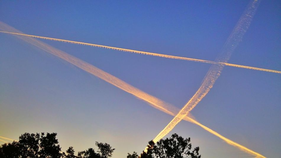 Photo Today's Sunrise Sky Smudges Planes Trees Morning East