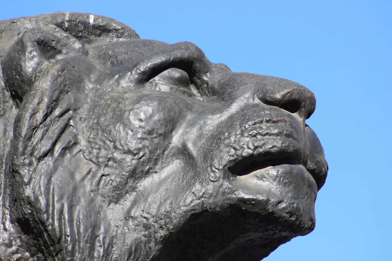 Art And Craft Clear Sky Close-up Creativity Day Lion No People One Animal Outdoors Sculpted Sculpture Sky Statue Maximum Closeness