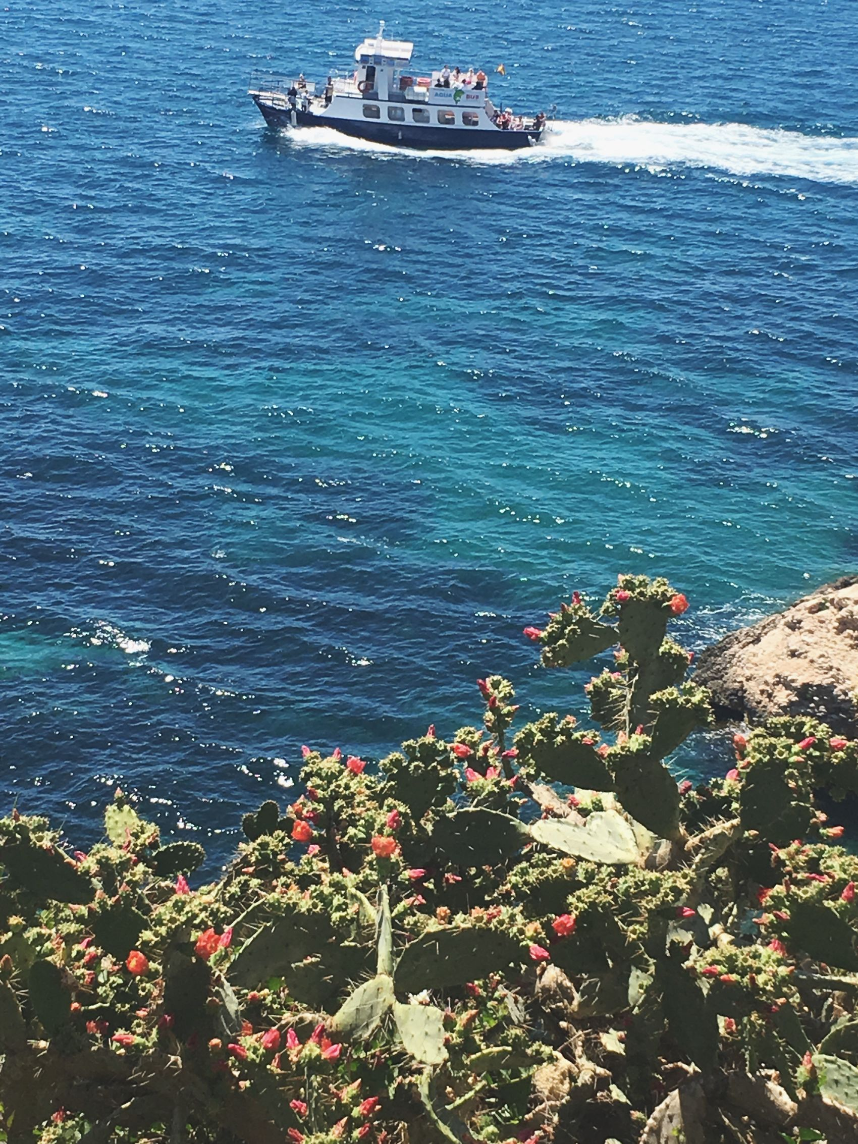 Ibiza2017 Ibizasightseeing Nature Travel Destinations Sea Beautiful Island White Island