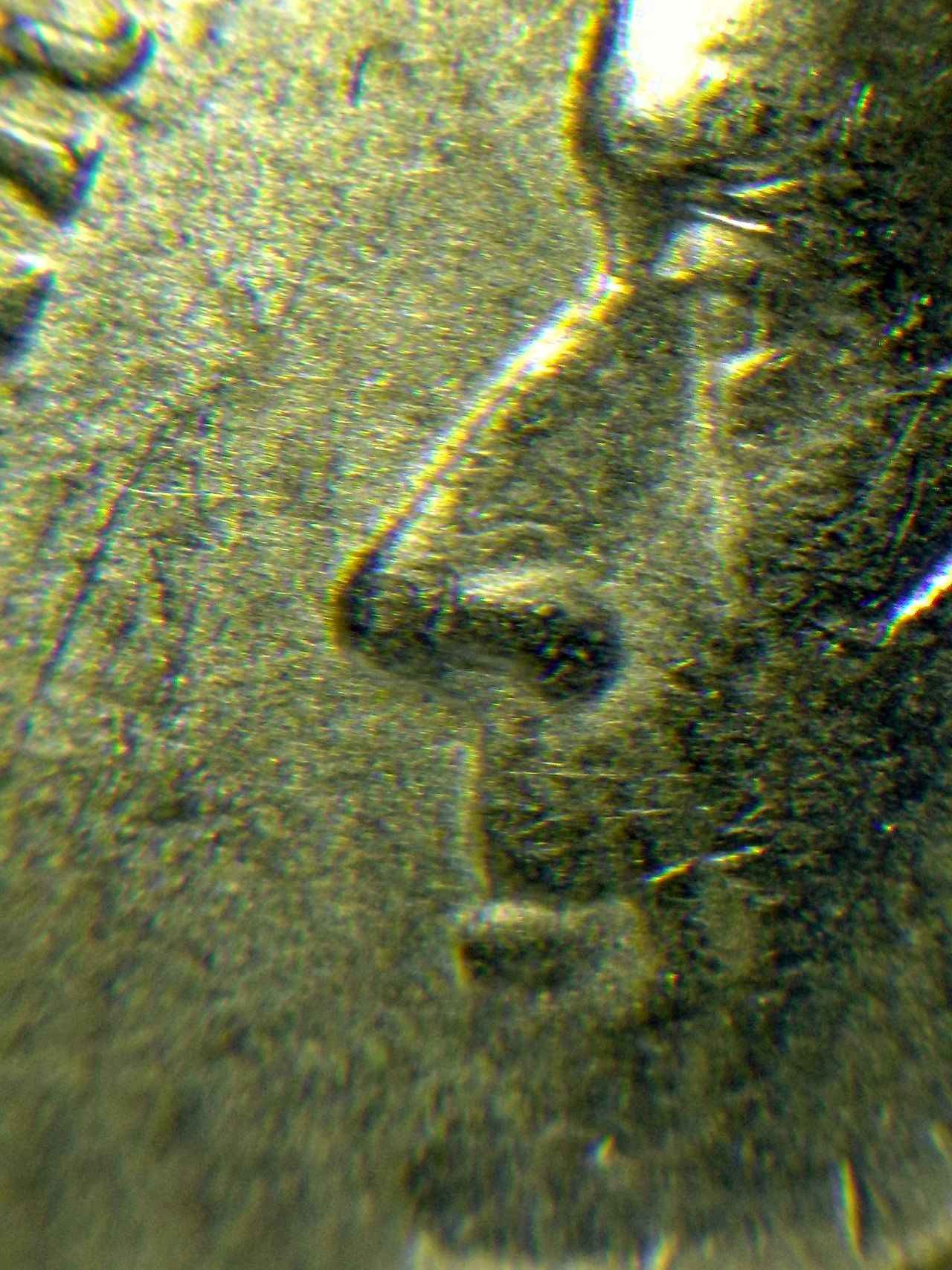 The Portrait of Jefferson President Coin USA America Metal Close-up Microscope EyeEm Best Shots EyeEmNewHere Faces Of The Money Under The Microscope