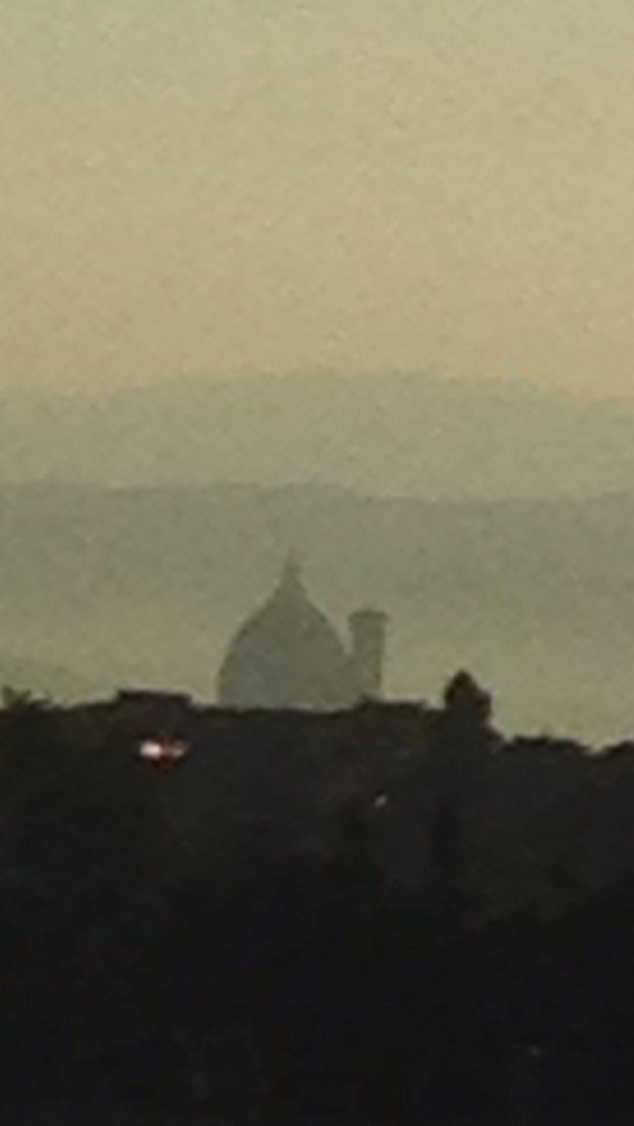 Good morning Florence