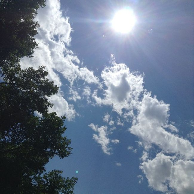 Today's sunshine! Sunshiny Sun Provo Clouds summer summerisalmostover movingday longday goodday