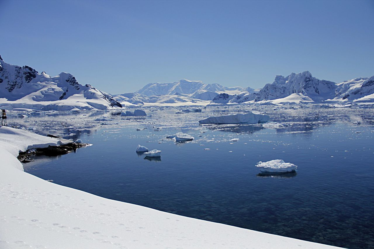 Check This Out Hanging Out Hello World Cheese! Relaxing Taking Photos Enjoying Life Travelgram Traveler Travelphotography Travel Photography Travelling Travel Traveling Travelingtheworld  Traveller Antarctic antarctic