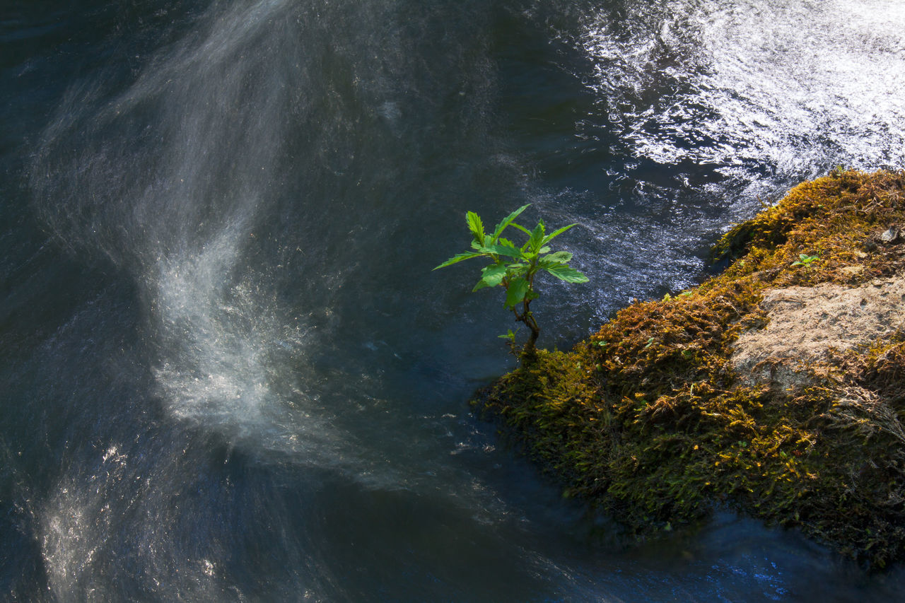 Beauty In Nature Blue Day Green Leaves Mountain Nature No People Outdoors Plant Rock Scenics Stone Water Wave