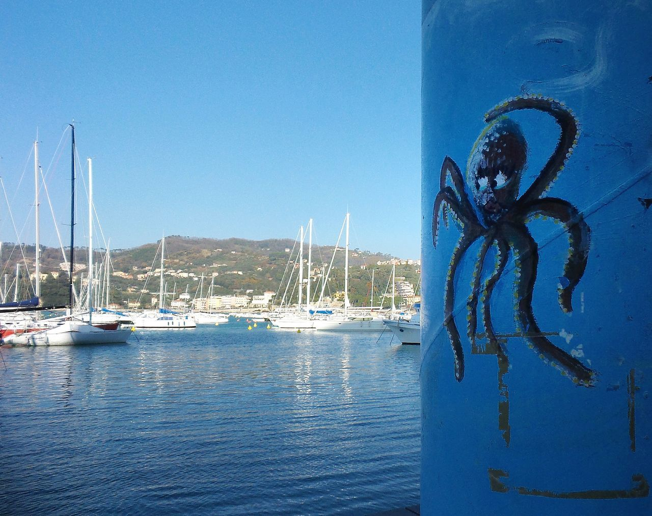 Sea Nature Water Sky Beauty In Nature Mobile Conversations Walking Personal Perspective The City Light Street Style Octopus Surprise Monster