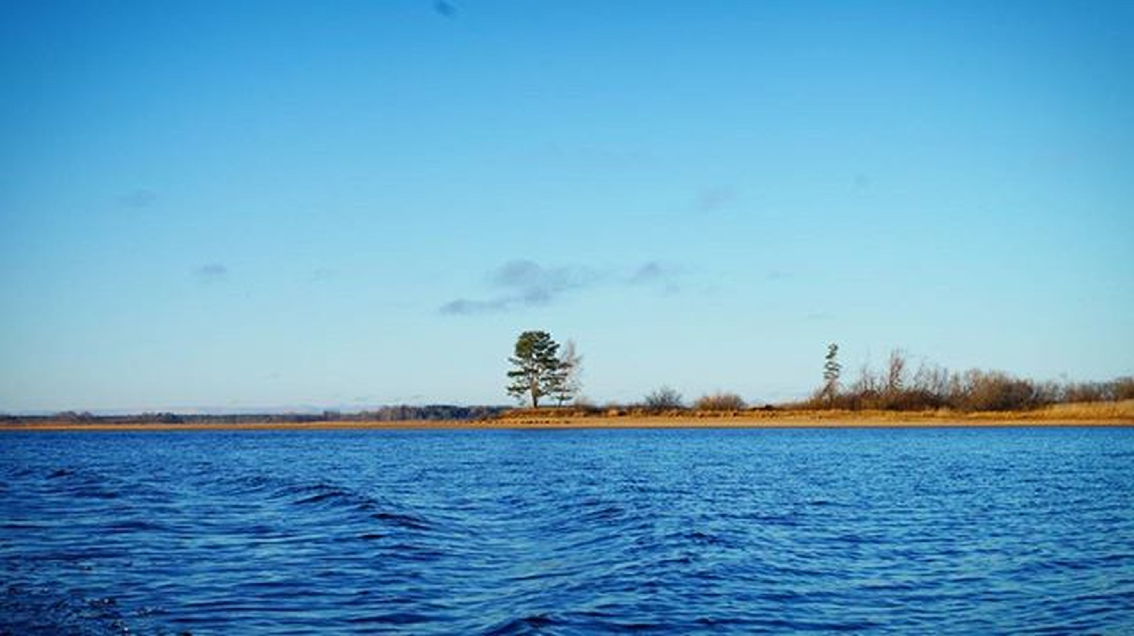 Цвет воды поражает)) безфильтра остров деревце рыбинка Рыбалка ктокудаамынарыбалку