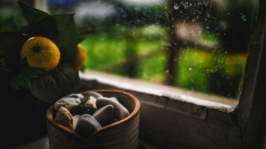 20170913 - Zen Calm Calmness Relaxing Still Life Photography Still Life. Nature. Colours Close-up Day Focus On Foreground Freshness Growth Indoors  Mood Moody Nature No People Relaxing Moments Still Life Still Life Photograpy Still Life Scenary Stones Tiny Stones Window Zen