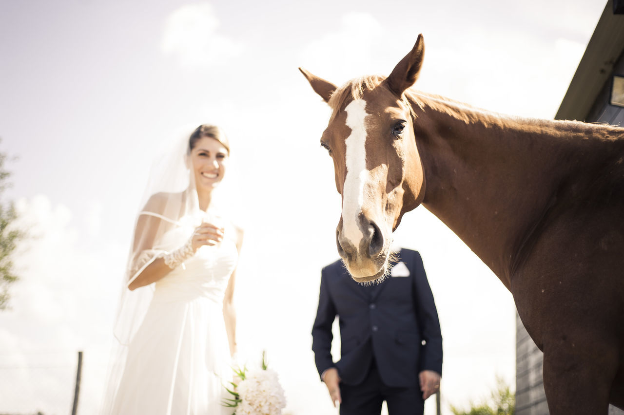 Wedding Photography Wedding Alternative FUNNY ANIMALS Bride Working Funny Pics Capture The Moment EyeEm Best Shots Cheese! The Week On EyeEm