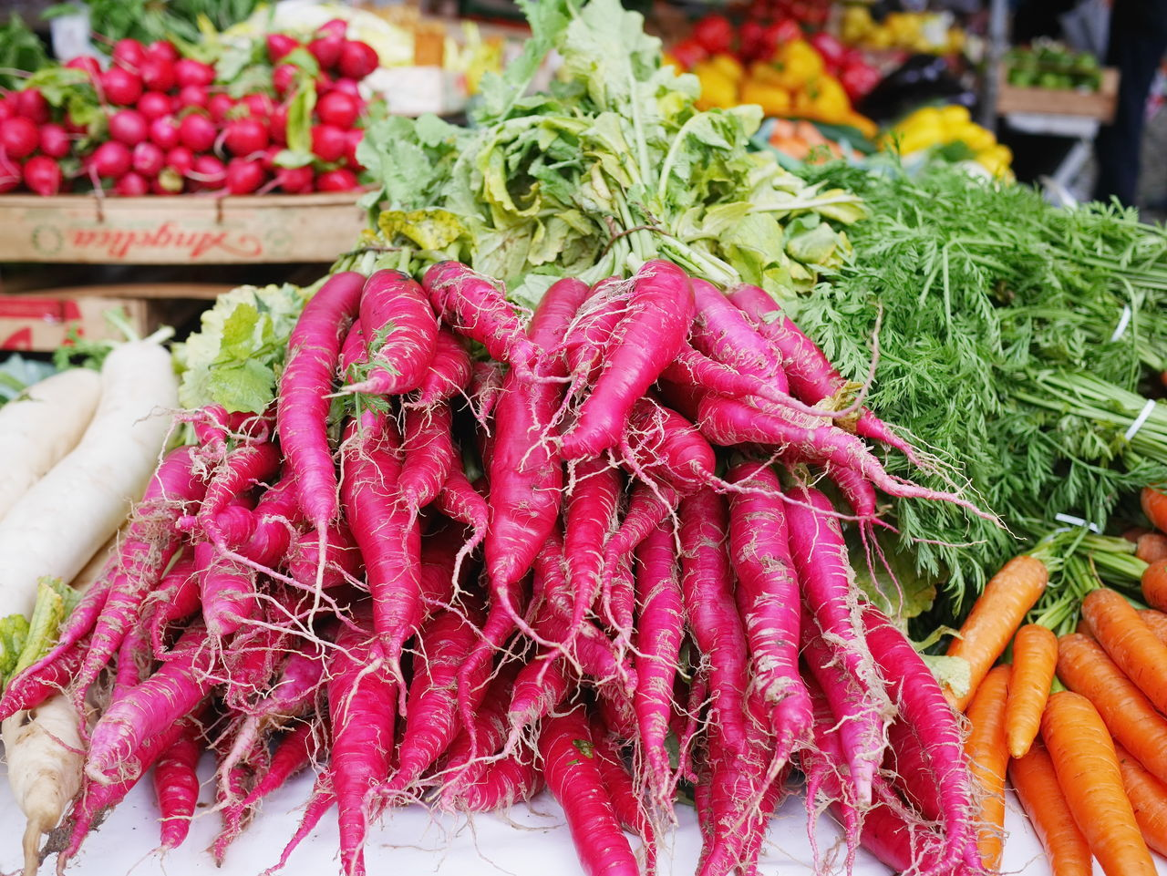 Adults Only Choice Close-up Common Beet Food Food And Drink For Sale Freshness Healthy Eating Healthy Lifestyle Holding Human Body Part Human Hand Large Group Of Objects Market Market Stall One Person Outdoors People Raw Food Real People Retail  Small Business Variation Vegetable
