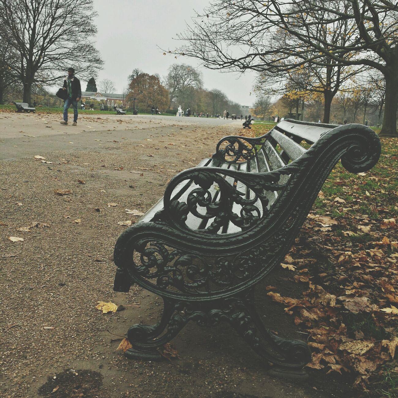 Walking Around Hydepark London Morning
