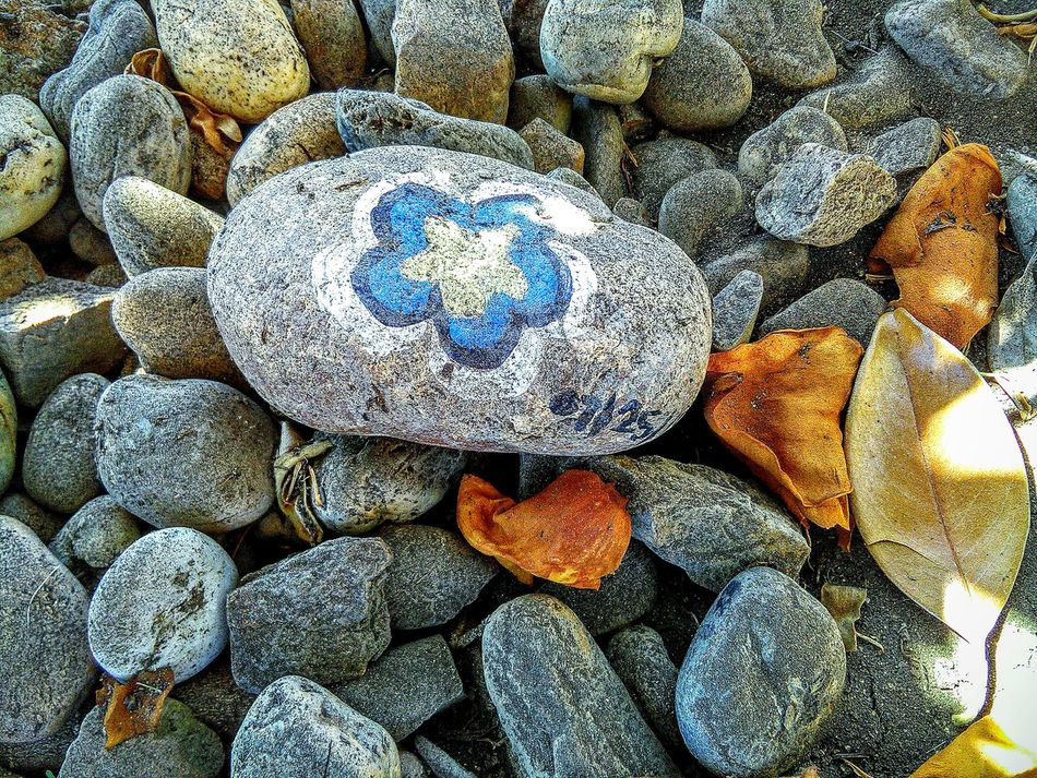 Taking Photos ❤ Leaves Stones N Rocks Meditation Garden My Photography Nature Painted Rocks Flower Design 43 Golden Moments Gold Colored Showcase July