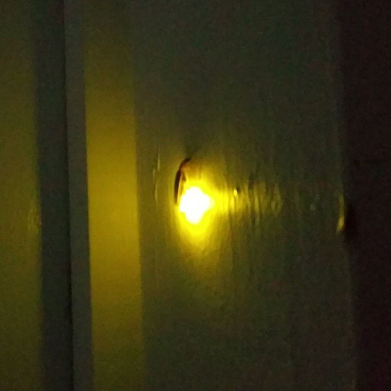 Lightning bug outside my door. Lightningbugs Firefly Fireflies