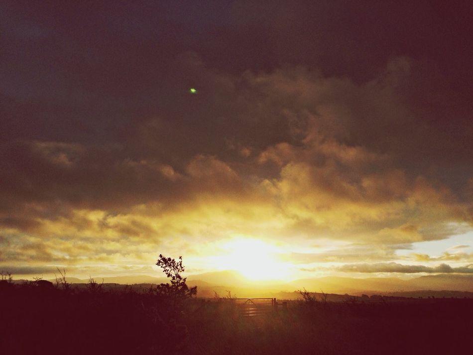 Morning Sunrise , Home Clara Filter