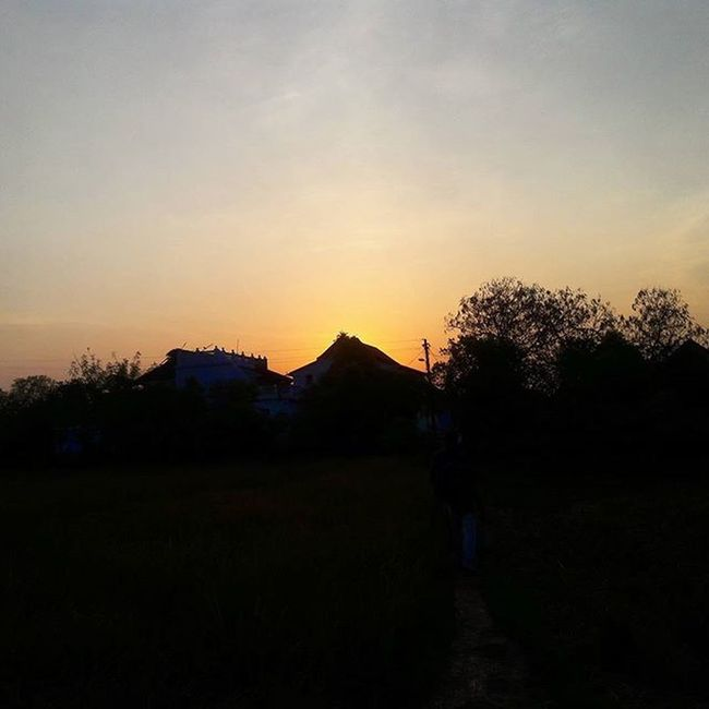 Sun set Village Countryside Sunset Sunset_pics Sunsets Sillouette Silhouette_creative Sun Evening Instalike Instapic Instagram Instacool Instaview Southindia India Tirunelveli
