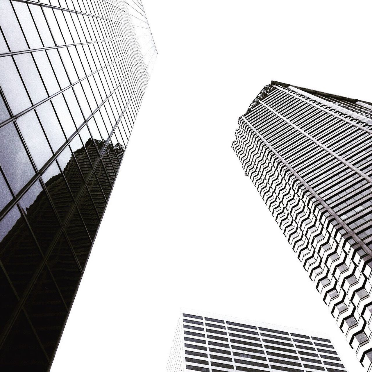 Low Angle View Architecture Building Exterior City Built Structure Skyscraper Modern Outdoors Office Building Exterior Clear Sky Day No People Corporate Business Sky Look Up And Thrive Lookingup Seattle Washington State PNW Black & White White Background High Contrast EyeEmNewHere