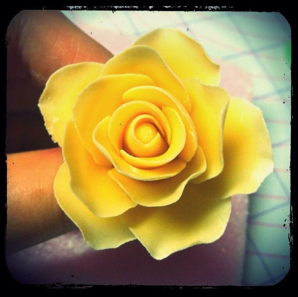 My First Fondant Rose