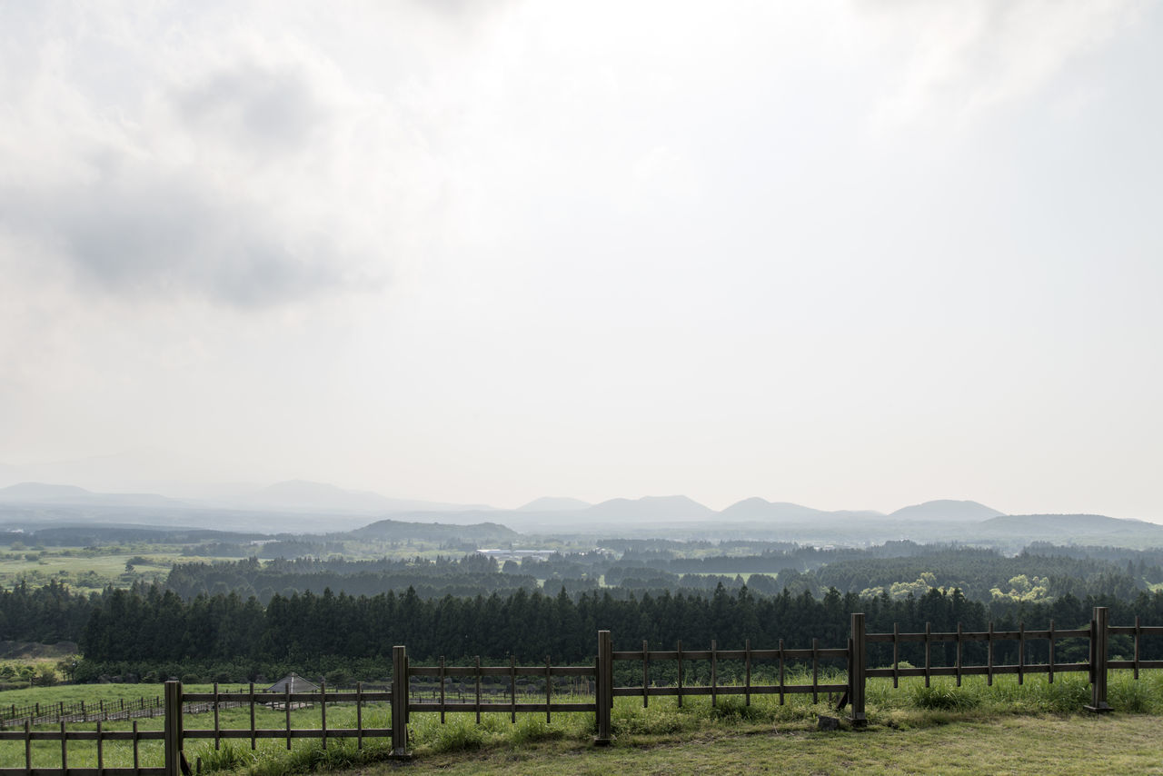 view of Sangumburi, a dormant volcano crater in Jeju Island, South Korea Agriculture Beauty In Nature Crater Day Dormant Volcano Field JEJU ISLAND  Landscape Mountain Mountain Range Nature No People Outdoors Protection Rural Scene Sangumburi Scenics Sky Tranquil Scene Tranquility Tree