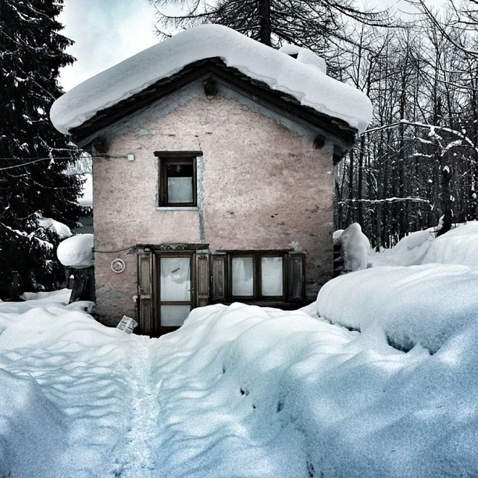 The haunt Gressoney Coulorband Galloclick Sittagram pinkhouse