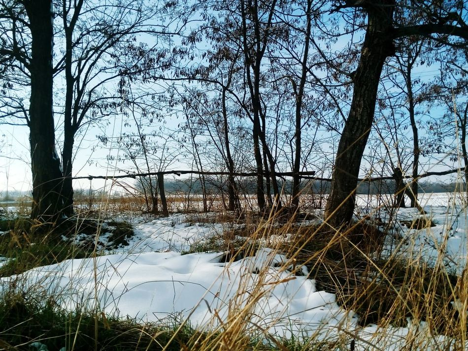 Willage See Nature First Snow ♥ Winter