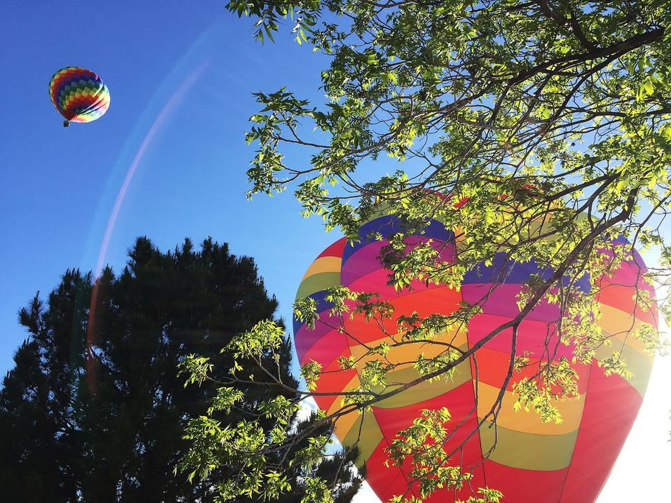 Fun Hot Air Balloons Multi Colored Outdoors