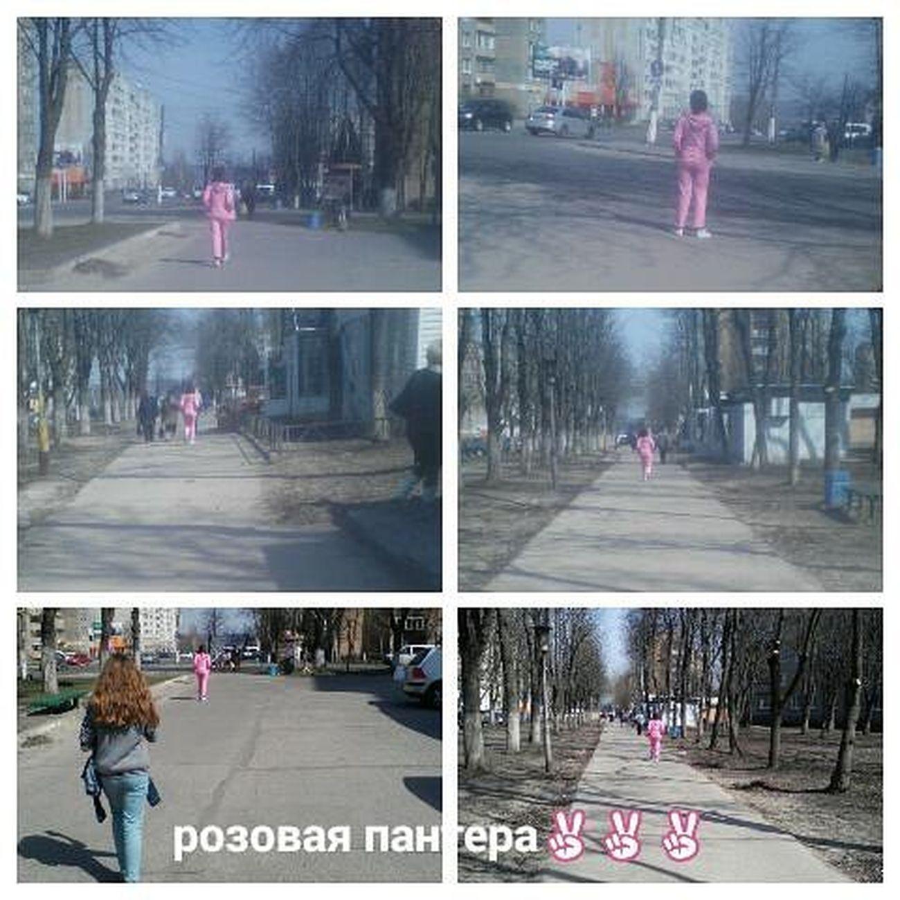 Идешь по улице балдеешь от солнешка и вдруг розовая пантера🙈🙉🙊😹 улица желек девка розоваяпантера взаимныелаики взаимнаяподписка