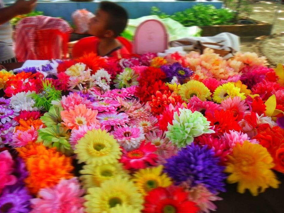 Enjoy Life Tailand Pataya Exiting Flowers Traveling Lifestyles