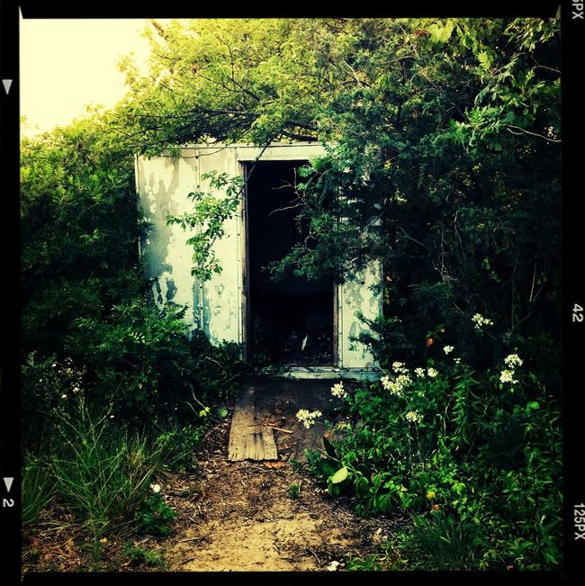 Abandon building, cities, houses, sheds are just as beautiful :)