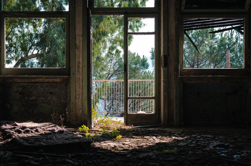 Mental Hospital Abandoned Abandoned Creepy House Creepywindowsunday Decay And Dereliction Horror Photography Urbex Vegetation Window
