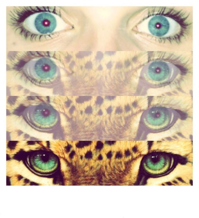 Blue Eyes Sorry im alittle obessed with eyes