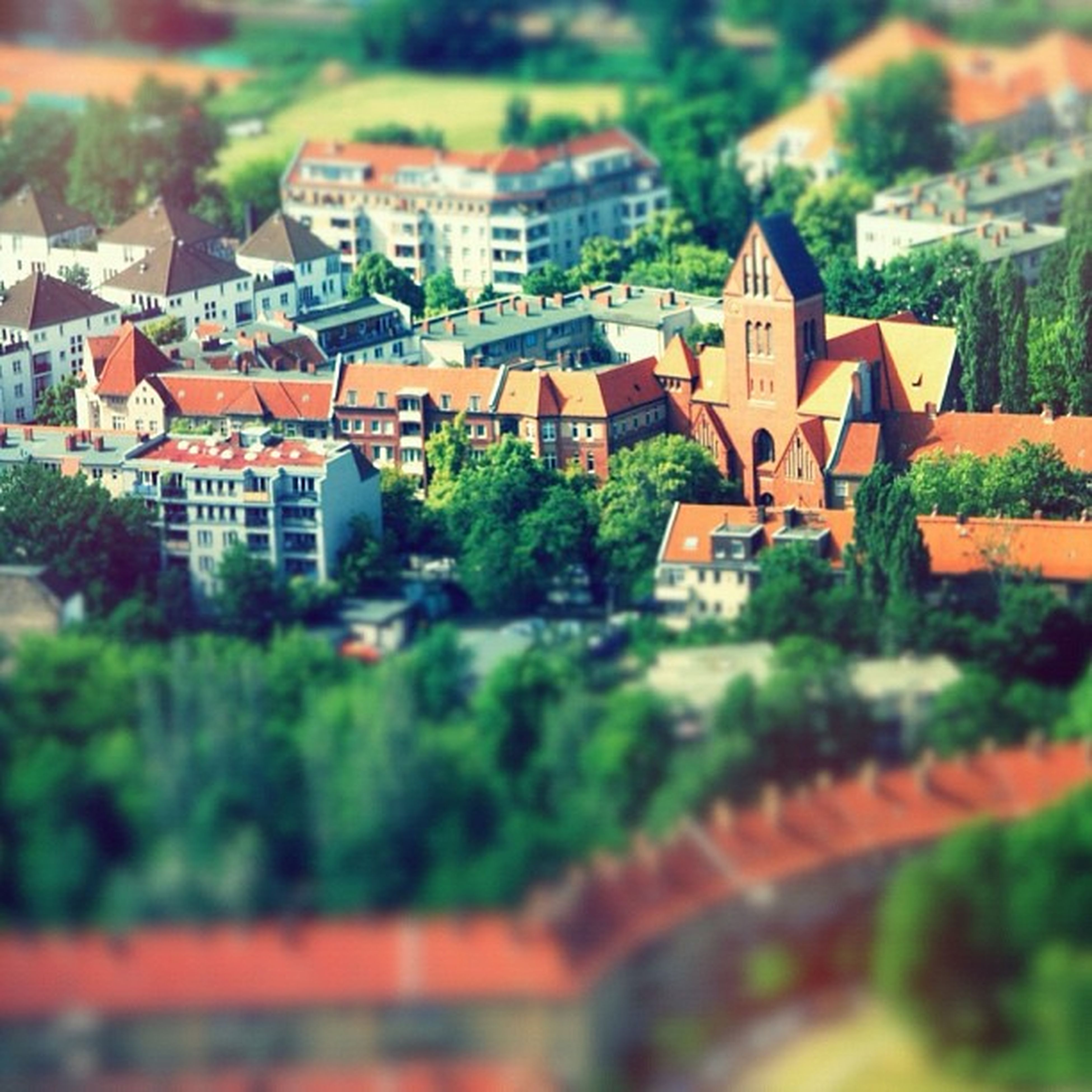 building exterior, architecture, built structure, house, residential structure, residential building, roof, tree, residential district, high angle view, town, growth, city, day, outdoors, townscape, no people, green color, selective focus, plant