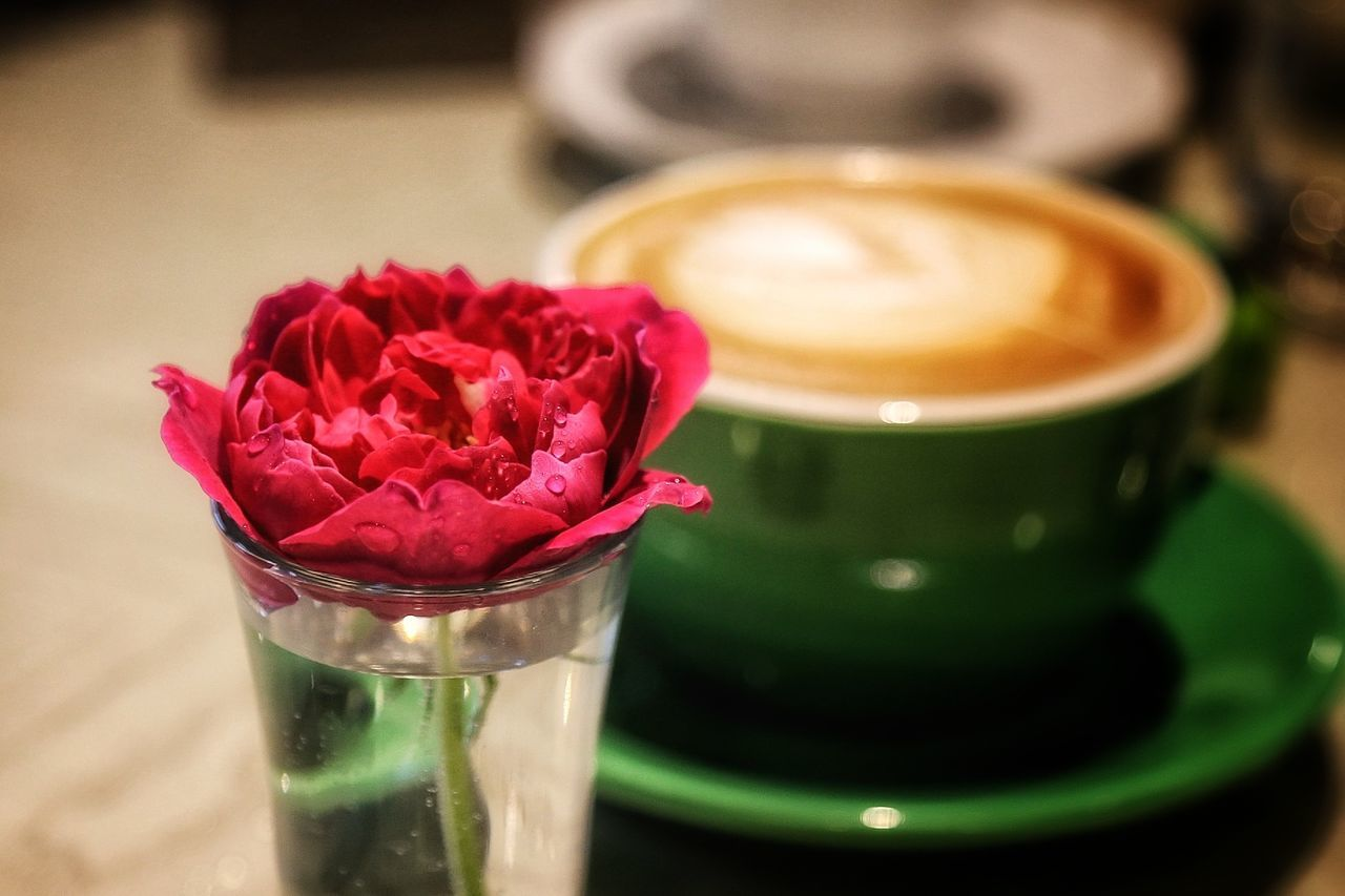 My Year My View Always Be Cozy Coffee Time Flower Rose - Flower Freshness Close-up Flower Head Nature Water Day Indoors  No People Lines Taking Photo Eyem Gallery City EyeEm Best Shots - Nature Capture The Moment From My Point Of View Taking Photos Light And Shadow Urban Exploration Color Beauty In Nature