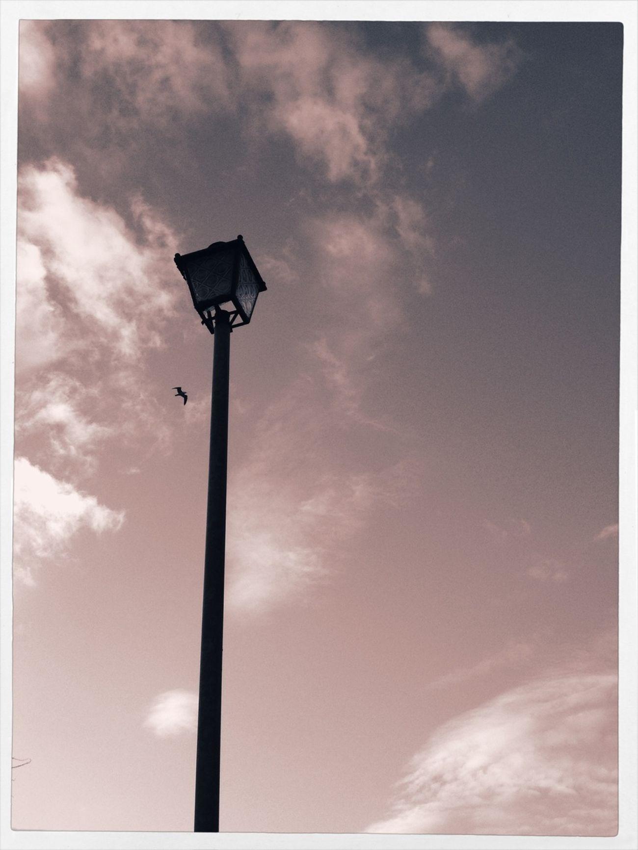 Light And Shadow Design Alt Photo Simplicity
