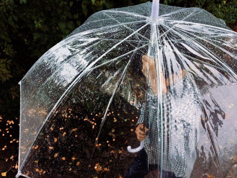 Close-up Outdoors Damaged Messy Nature Fragility Tranquility Weathered No People Rain Rainy Days Umbrella Kid