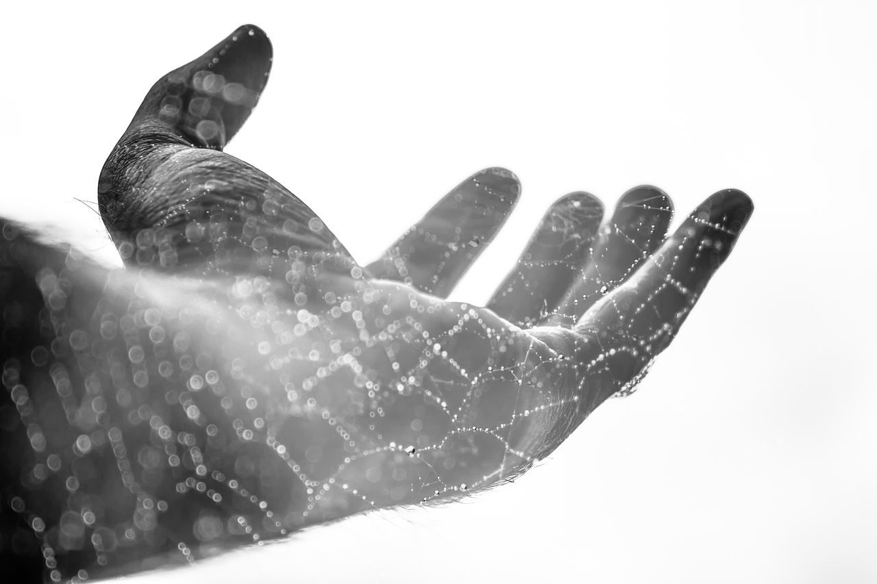 Double Exposure Hand Palm Fingers Web Spiders Web Spider Web Spider Web, Dew, Morning, Dew Water Drops Bokeh Dof Style Monochromatic Reaching Out Reaching For The Sky Textures And Surfaces Textured  Strands Water Droplets Droplets On A Spiderweb Creative Light And Shadow Light Pivotal Ideas