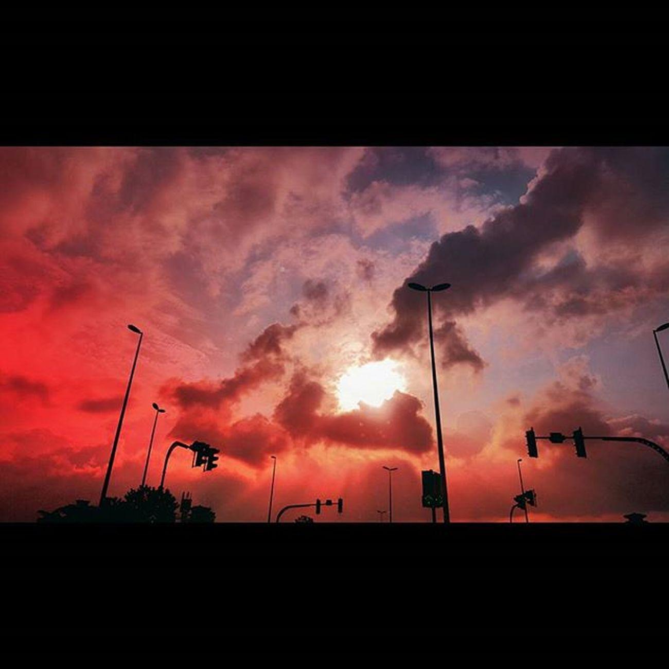 i t ' s s o w a r m Biakkch Tya714 Tyaeze Borneoboy Borneoislandproject Streettogether Awesomeglobe Igersmalaysia Igersone Igers Igersxmalaya Ikutcarakita @borneophoto_hunter @igersmalaysia @igersxmalaya