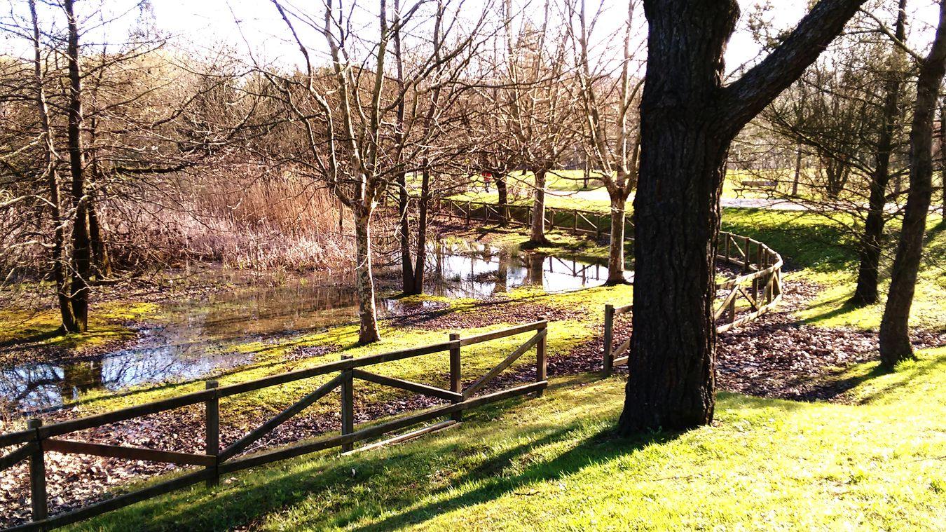 Jardines Jardines Secretos Garden At The Park