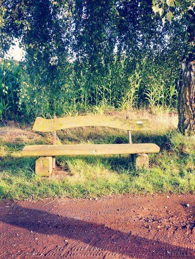 im Feld von Grebenhain.. Relaxing First Eyeem Photo