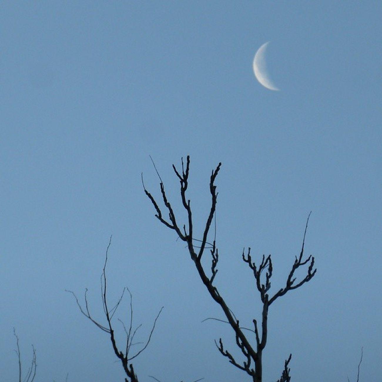 La Luna al alcance. Skylovers Zaragoza Lunalunera Igerszgz igersaragon
