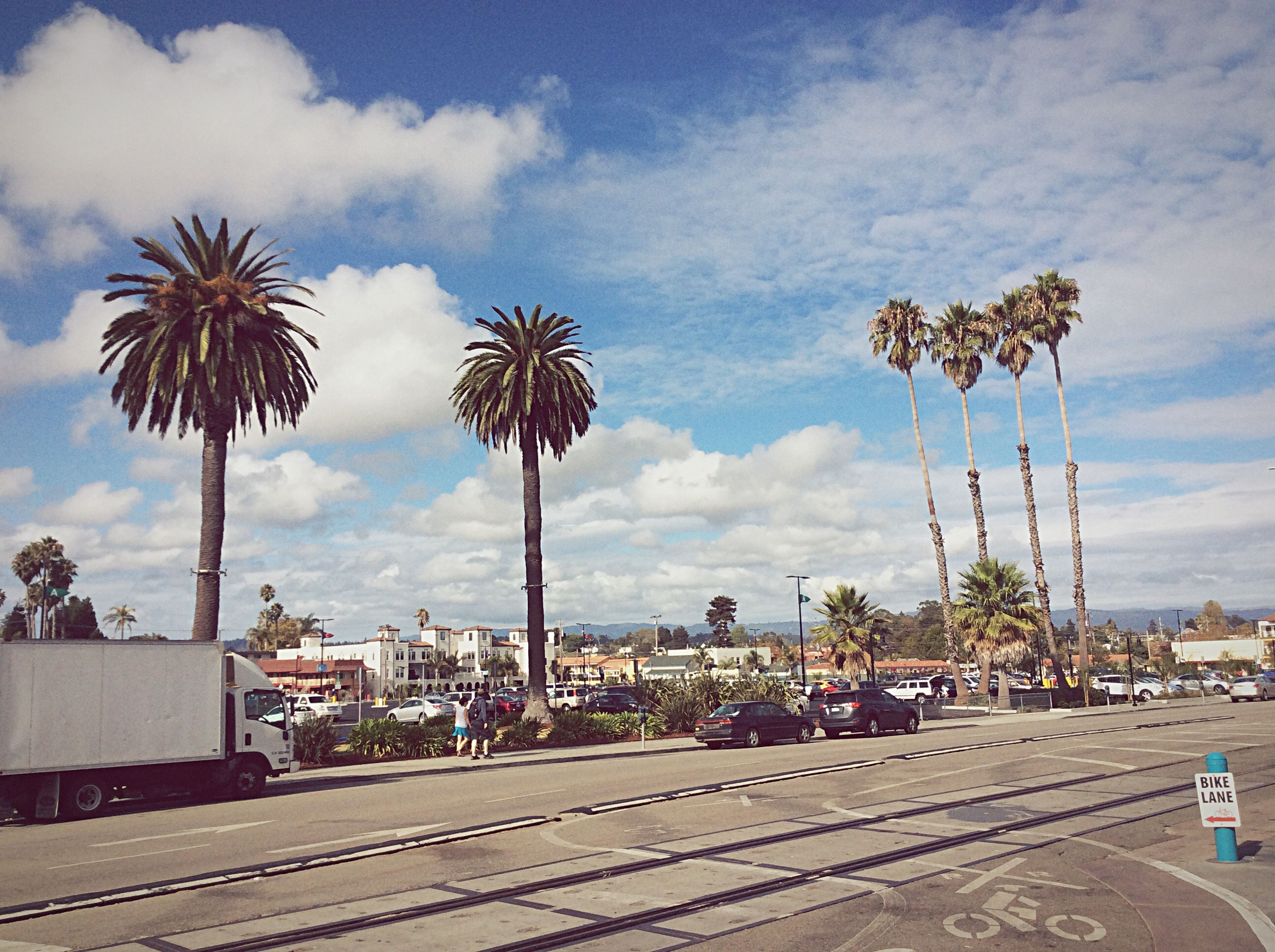 palm tree, sky, building exterior, architecture, built structure, cloud - sky, tree, road, city, street, cloud, cloudy, transportation, the way forward, car, city life, road marking, incidental people, day, outdoors
