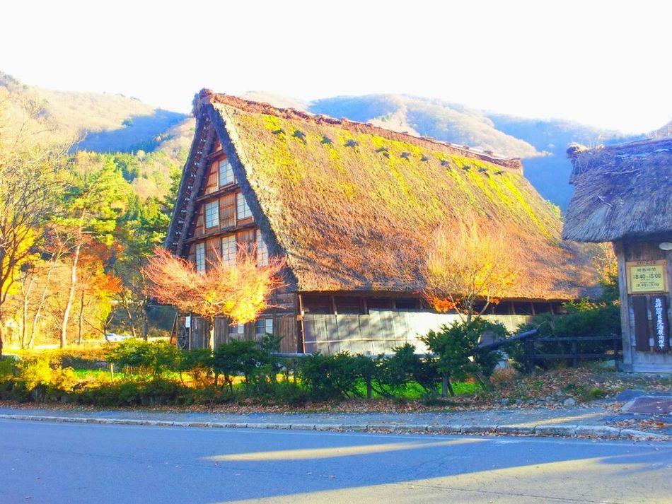 Japan Sirakawagou World Heritage