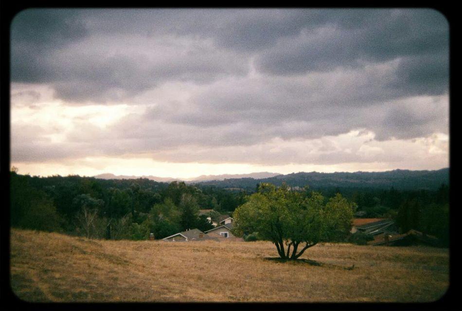 Holga Film Sky And Clouds California