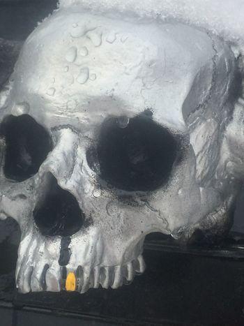 Urban snow skull tears