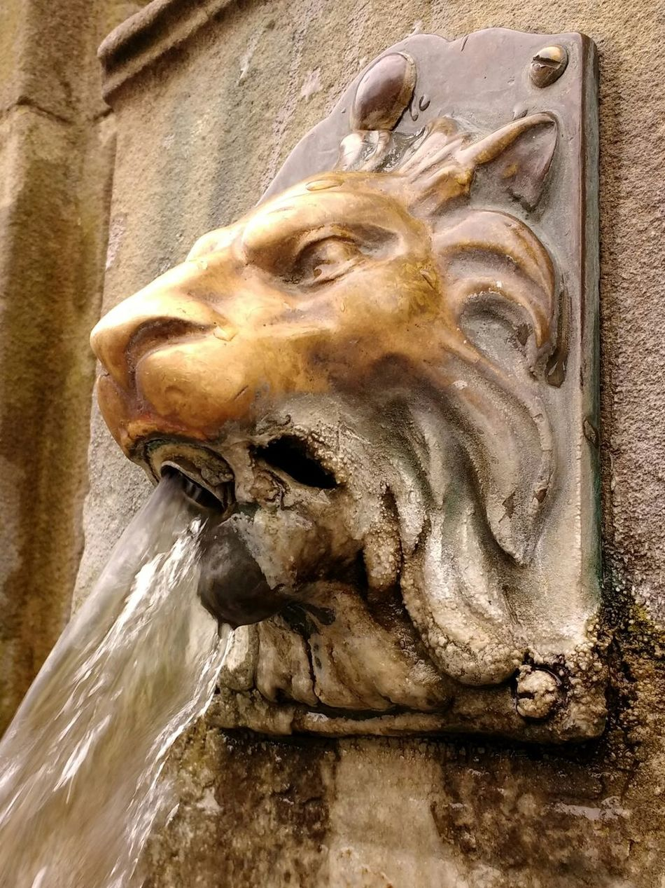 Lion Buxton Spring Water Sculpture Water Feature