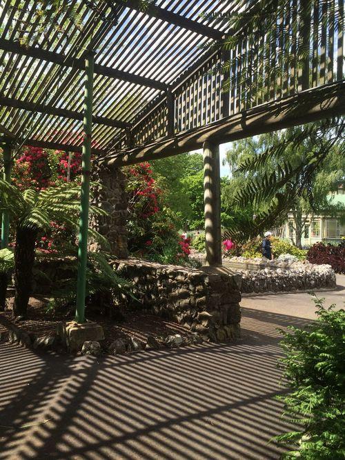 Seeing The Sights Ballarat Botanic Garden
