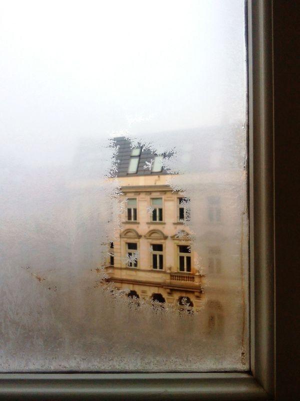 Hackeschermarkt Eisblumen Winter Frost Pattern Window Altbau It's Cold Outside