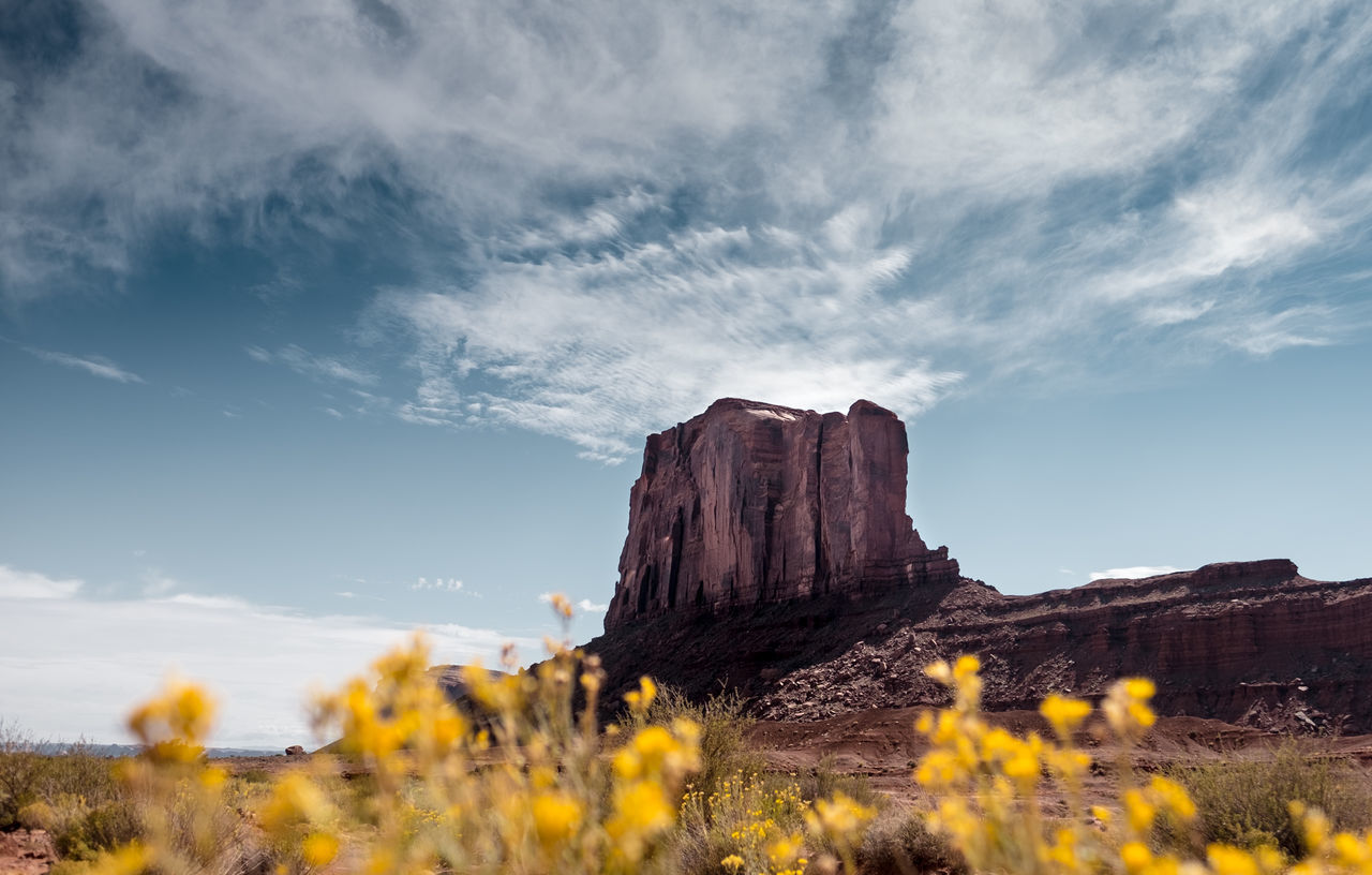 Colorful Mars. Monument Valley Navajo Tribal Park, Arizona, USA. Adventure Arizona Flowers Fujifilm Fujinon Landscape Landscape_Collection Landscape_photography Monument Valley Nature No People Outdoors Roadtrip Rock Formation Scenics Sky Travel Travel Destinations Travel Photography USA Vacations Wanderlust Wide Angle Wild West X-T10