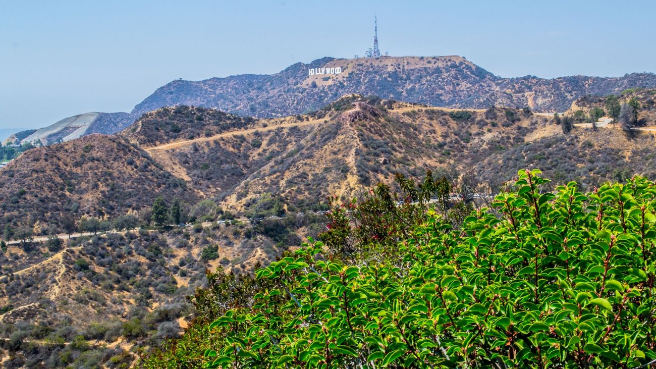 Hollywood Sign and Griffith Park - From our tour Cali California City Friendlylocalguides Griffith Landscape Losangeles Mustsee Observatory Panorama Panoramic USA Views