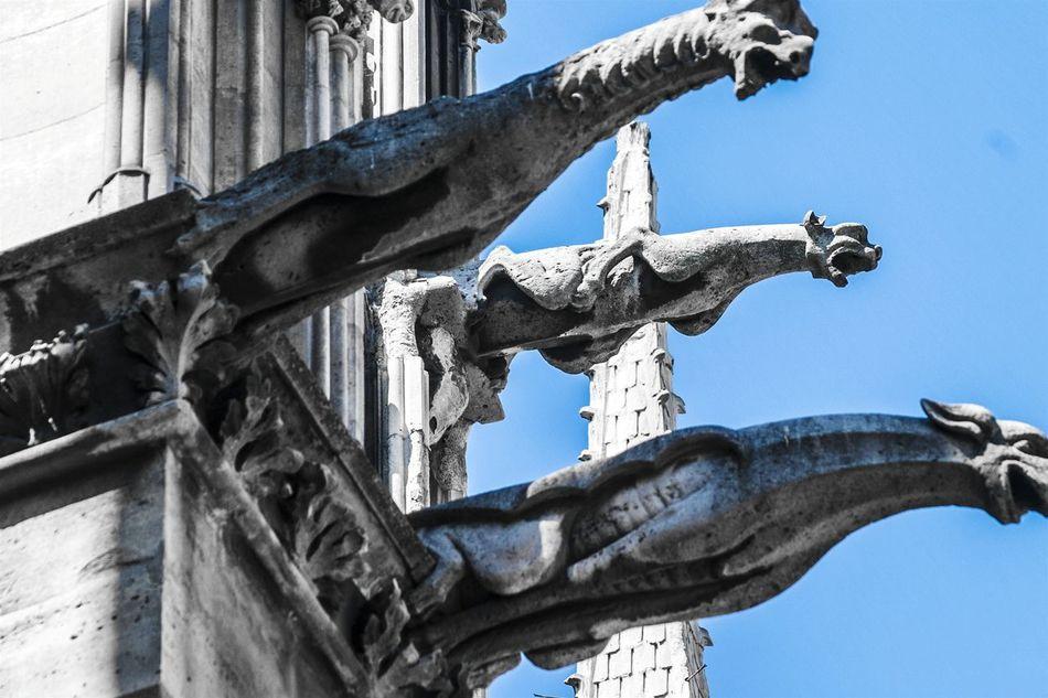 Beautiful stock photos of gothic, Animal Representation, Architecture, Art, Art And Craft
