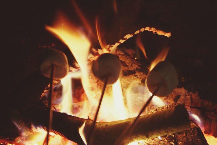 Marshmallows Fire Photography First Eyeem Photo