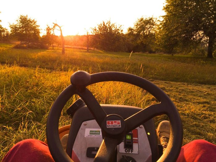 Transportation Grass Steering Wheel Close-up Clear Sky Sunset No People Speed Speedometer Day Outdoors Nature Sky Handlebar Mower